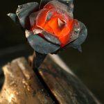 rosa ferro battuto